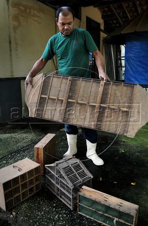 CETAS RJ Centro de Triagem de Animais Silvestres - Wilton, tratador dos animais, mostra diversas gaiolas usadas pelos traficantes clandestinos de animais em Pendotiba, Rio de Janeiro, Brasil, Maio 9, 2012.  (Austral Foto/Renzo Gostoli)