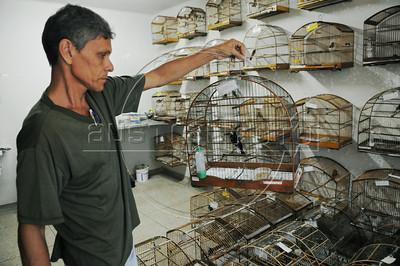 CETAS RJ Centro de Triagem de Animais Silvestres - Sidney Fernandes da Costa, trata passaros alojados no CETAS RJ em Pendotiba, Rio de Janeiro, Brasil, Maio 9, 2012.  (Austral Foto/Renzo Gostoli)