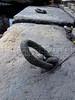 CAIS DA IMPERATRIZ-  Detalhe das pedras no piso do Cais Da Imperatriz e do Valongo, Rio de Janeiro, Brasil, Marco 25, 2011.  (Austral Foto/Renzo Gostoli)