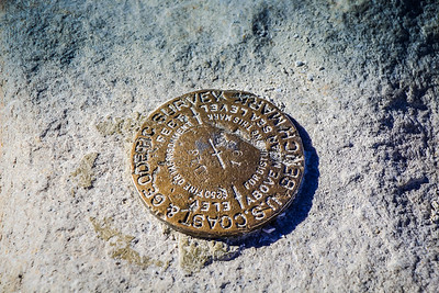 Whitney Benchmark
