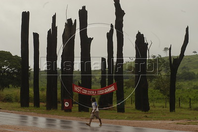 A pedestrian passes a memorial to Landless Peasant (MST) massacre victims, made of 19 burned tree trunks, on the side of the PA-150 highway near Carajas in southern Par‡ state, Brazi. In what ins now known as the Carajas Massacre, 19 MST members were killed April 19, 1996 when state police opened fire on hundreds of protesting MST members who had blocked the highway to demand land reform. Other two victims died from the wounds some years later. (Australfoto/Douglas Engle)