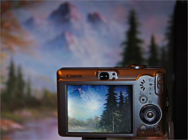 John Peterson-A Camera Through A Camera