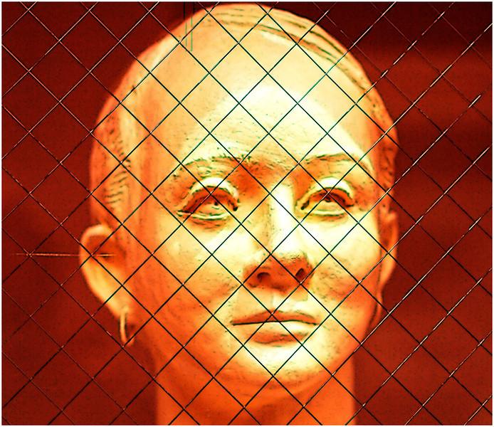 Irene Szilagyi-looking through te glass case