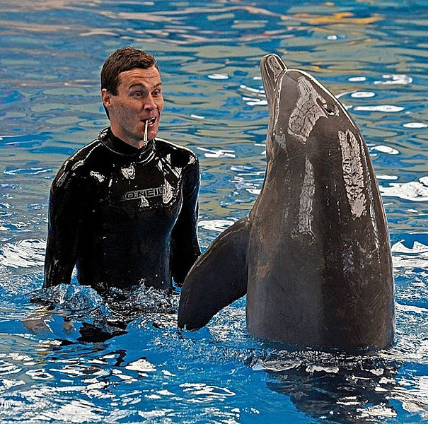 Sue Lindell-Dolphin Trainer