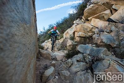 Sondra Williamson | Tunnel Trail