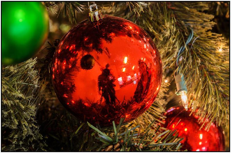 Bill Bishoff-Christmass Tree