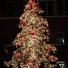 Dave Waycie - Christmas Tree
