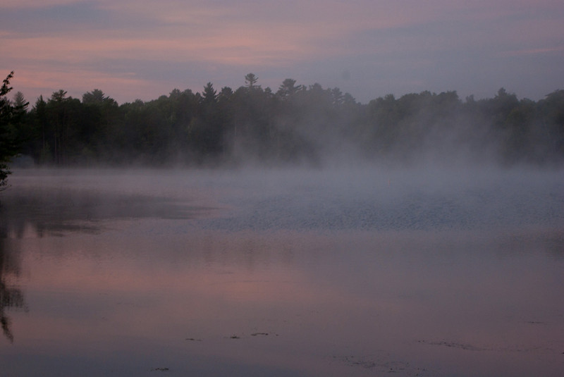 Suzanne Maso Summer2012 morning mist