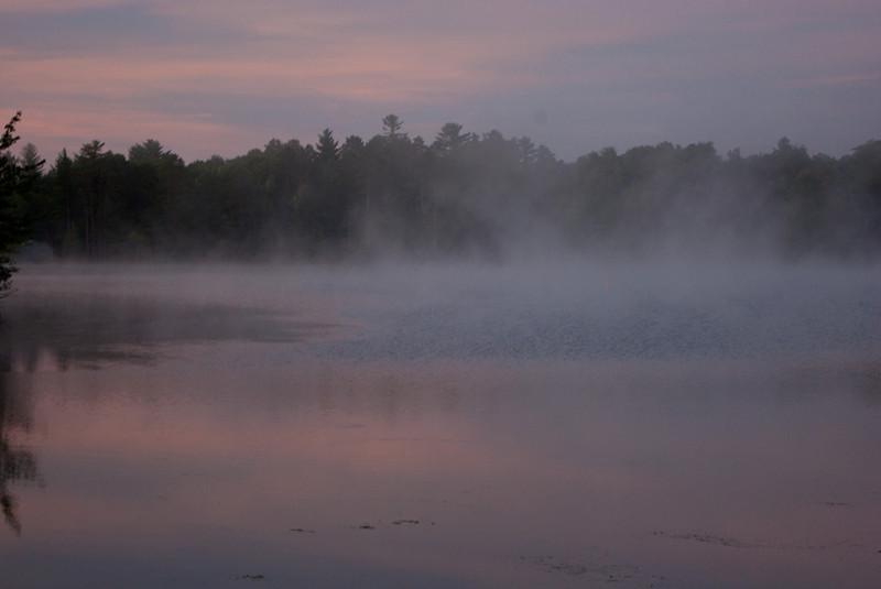 Suzanne Maso Summer2012 morning mist