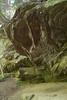 bob erickson Trail-6-at-Turkey-Run