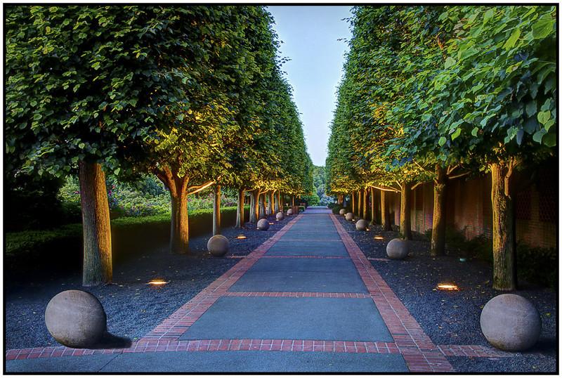 Marie Rakoczy - Garden Path