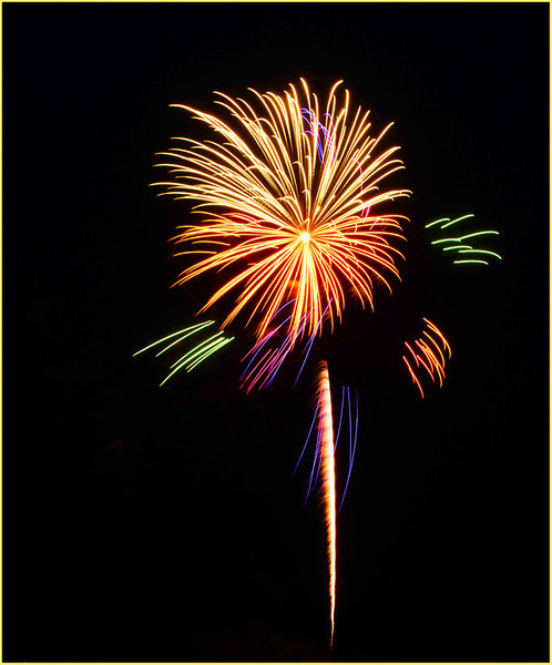 Marie Rakoczy - Floral Fireworks