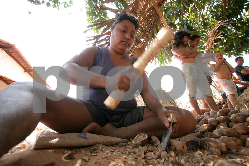 a woman shells babassu nuts in the countryside of Brazil's northeastern sate of Maranhao. The babassu palm, native to this northeastern corner of Brazil, is an important part of the local culture and economy - more than 60 products come from it including oil used for cooking and cosmetics as well as the nutshell which is used as cooking fuel. The Association of Land Reform Settlements of Maranhao State (ASSEMA) is an umbrella NGO of associations operated for and by rural peasants and babassu nut crackers, which British NGO Action Aid has helped support ASSEMA since 1999. (AustralFoto/Douglas Engle)