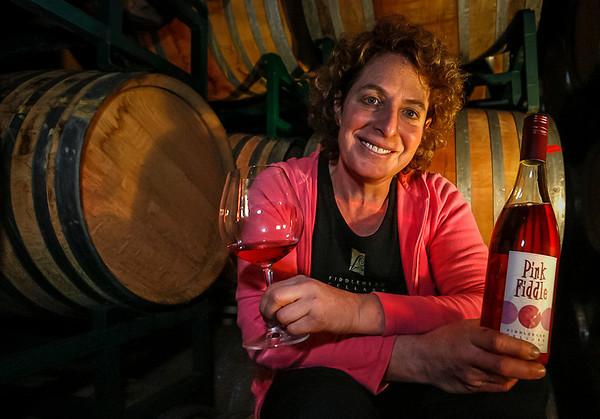 Fiddlehead Winemaker