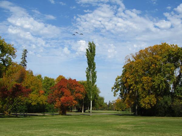 Splendid Autumn Day