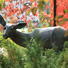 Deer, Leo Mol Sculpture Garden