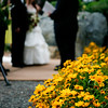 danis-wedding-photos-027