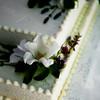danis-wedding-photos-013