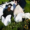 danis-wedding-photos-009