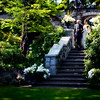 danis-wedding-photos-098