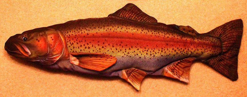 Bored at the house.....trout pillow