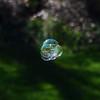 Tiny Bubbles...