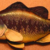 Bored again...Largemouth Bass pillow