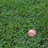 The lost baseball