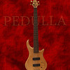 My Pedulla Thunder Bolt 5 String Bass Guitar.