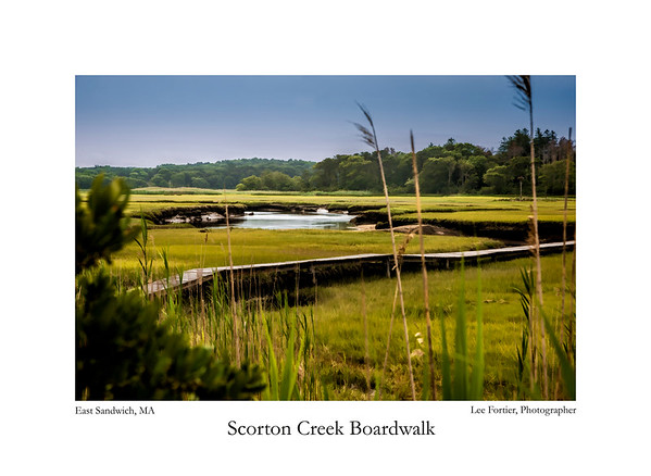 Scorton Creek Boardwalk