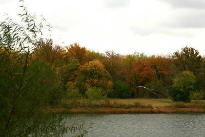 Fall colors across pond, Samual Farms Park, Sunnyvale, Texas