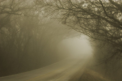 Foggy road, Sunnyvale, Texas