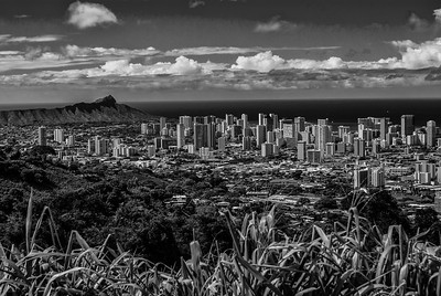 Honolulu- Waikiki Skyline