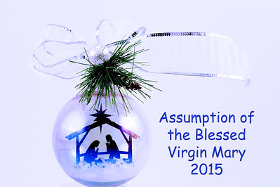 20151124 ABVM Christmas Ornaments-5670 blue with text final