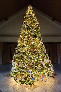 20151215 Faith Formation Christmas Tree-6043 v2