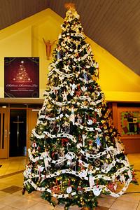 20151215 Faith Formation Christmas Tree-6067 v2