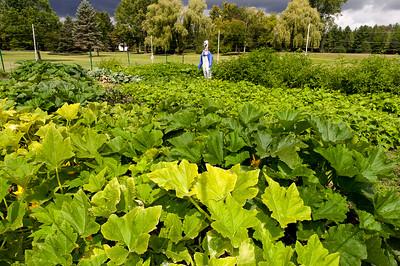 20140912 ABVM Garden-1389