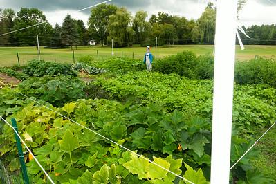 20140912 ABVM Garden-1407