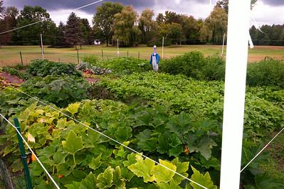 20140912 ABVM Garden-1406