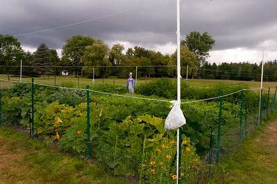 20140912 ABVM Garden-1397