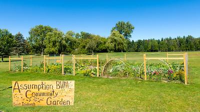 20150914 ABVM Community Garden-2706 16x9