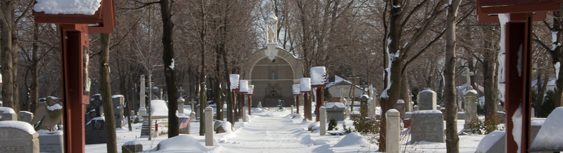 The cemetery in the foreground and the shrine in the background on December 21, 2008 around Noon.