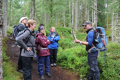 Lichen lesson from Tim