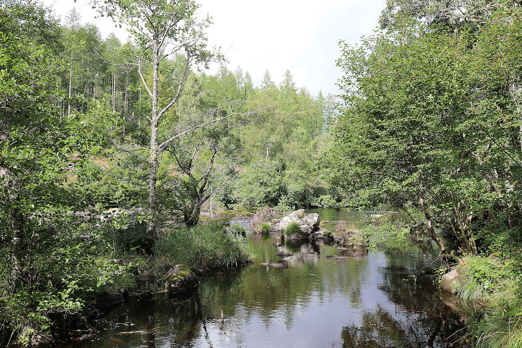 Above the Rogie Falls