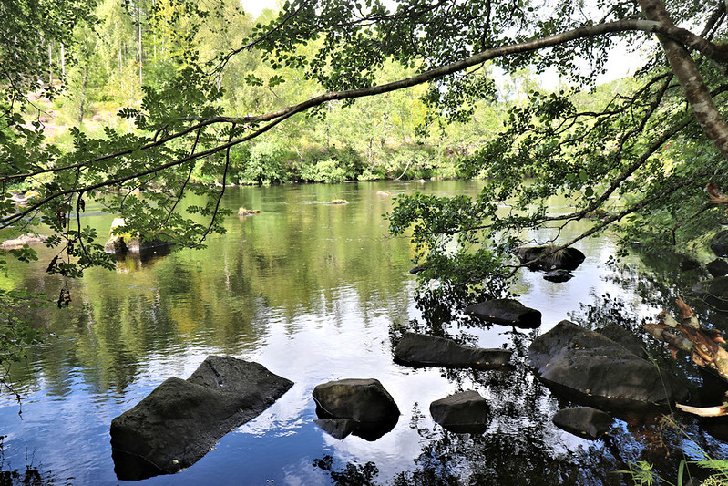 Saturday 19 August - Above the Rogie Falls