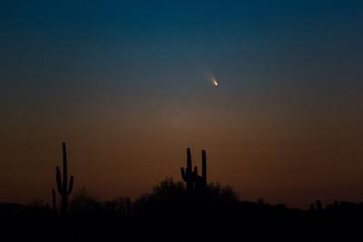 Comet PanSTARRS over Phoenix