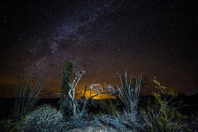 KOFA National Wildlife Refuge, AZ