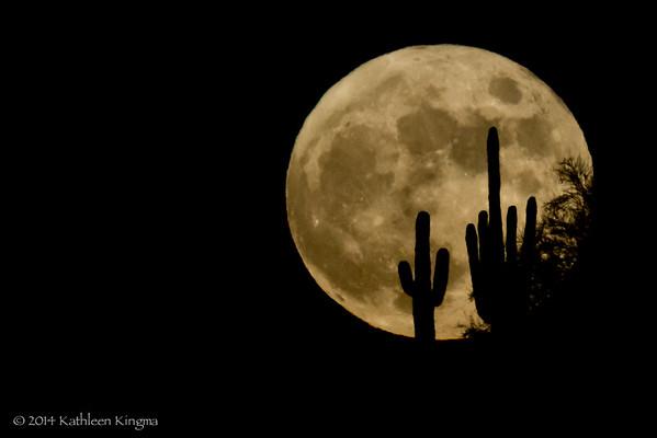 Full moon over Papago - 6 Nov 2014