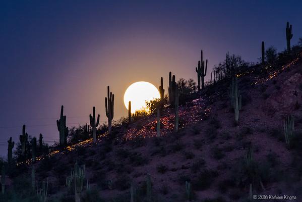 Moonrise over Desert Botanical Garden - 22 Feb 2016