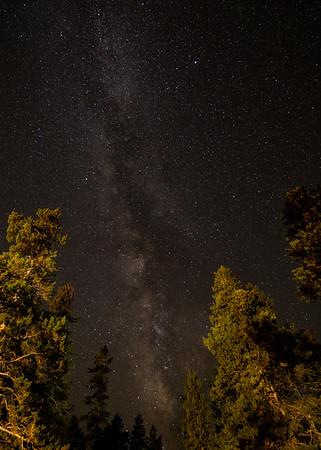 Frankieboy Photography |  Milky Way And Trees Astrophotography | Estes Park Colorado
